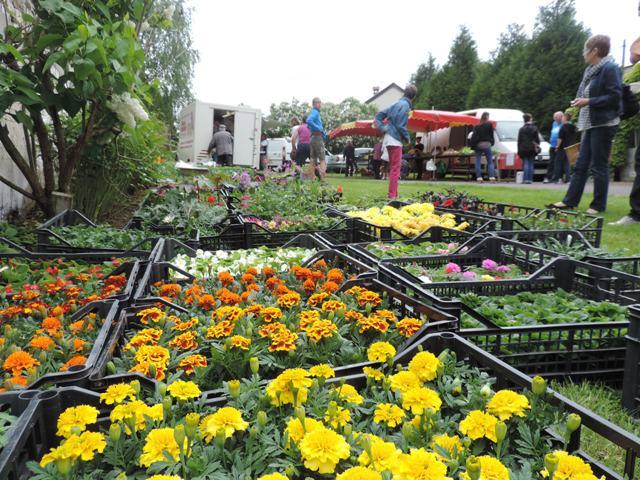 Horticulteur au marché paysan d'Avaux